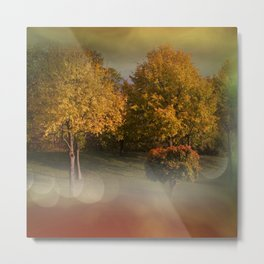 autumn will come -1- Metal Print