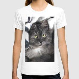 Spooky Black Cat T-shirt