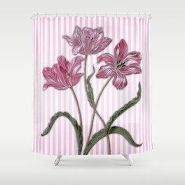 Maria Sibylla Merian: Three Tulips Shower Curtain