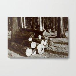Stacked logs Metal Print