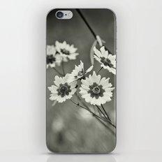Sepia Sun Dance iPhone Skin