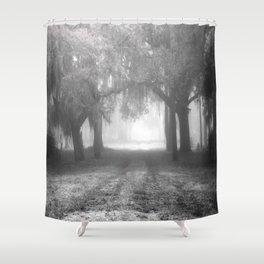 Foggy Evergreen Shower Curtain