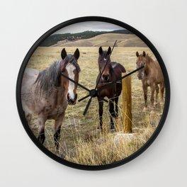 Colorado Horses Wall Clock