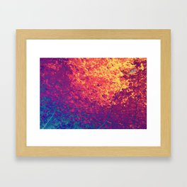 Arboreal Vessels - Aorta Framed Art Print