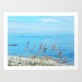 Circle of Rocks and the Tall Grass Art Print