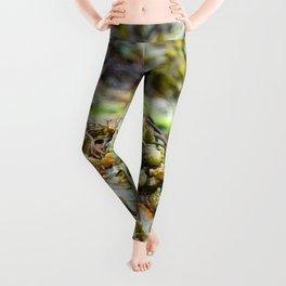 Seaweed Series 2 Leggings
