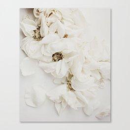 MOMENTO MORI ROSES Canvas Print
