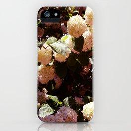 Pink Snowballs II iPhone Case