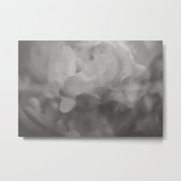 Petals in Abundance - Abstract Floral Photography Metal Print