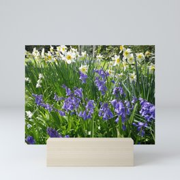 SPRING FLOWERS IN A COTTAGE GARDEN CORNWALL Mini Art Print