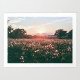 A Suburbian Sunset Art Print