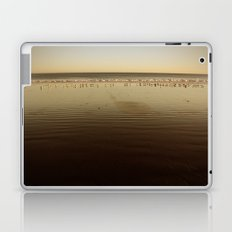 Seagulls on the Horizon Laptop & iPad Skin