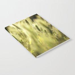 Summer Grass Portrait Notebook