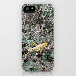 Yellow Cricket iPhone Case