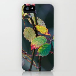Autumn Aquarelle on the Canvas of Winter iPhone Case