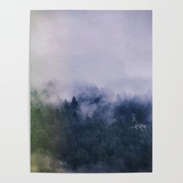 Forest Cump At Autumn Poster
