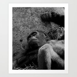 man or beast Art Print