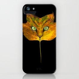 Autumn Cat-5 iPhone Case