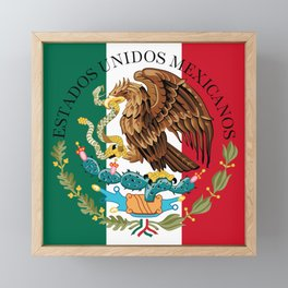 Flag of Mexico & Coat of Arms augmented scale Framed Mini Art Print