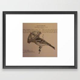 Adaptation #1  Framed Art Print