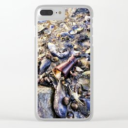 Bottom of the Sea at Low Tide in Casco Bay (1) Clear iPhone Case