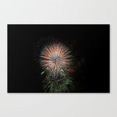 Fireworks make you wanna... (5) Canvas Print
