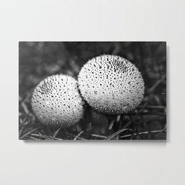 dotted mushrooms Metal Print