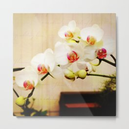 Orchids at Show Metal Print