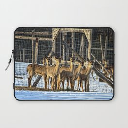 Whitetail Deer Stare Down Laptop Sleeve