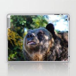 sunny bear Laptop & iPad Skin