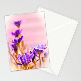 Osteospermum flowes Stationery Cards