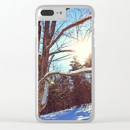 Sunny Winter Tree Clear iPhone Case
