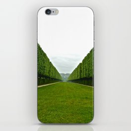 Between The Hedges iPhone Skin