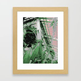 Chicago Conservatory Framed Art Print