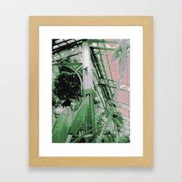 Chicago Conservatory Framed Art Print