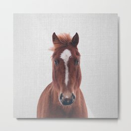 Horse II - Colorful Metal Print