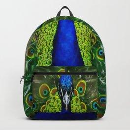 Peacock dreamcatcher Backpack