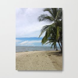 I've got a lovely bunch of coconuts... Metal Print