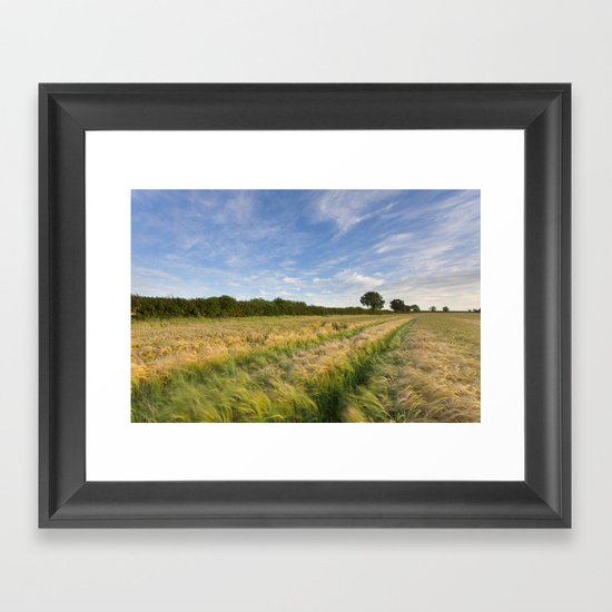Field of Barley Framed Art Print