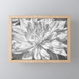 Marbled Dahlia, No. 1 bw Framed Mini Art Print