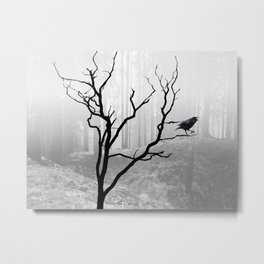 Black Crow in Foggy Forest A118 Metal Print