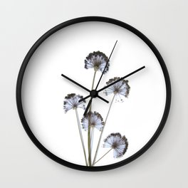 flowers on white background. botanical prints framed. Wall Clock