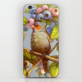 Orange cheeked waxbill finch with blueberries iPhone Skin