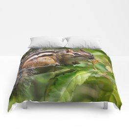 Summer Chippy Comforters