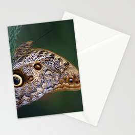 Perfection of a Sleeping Butterfly Stationery Cards