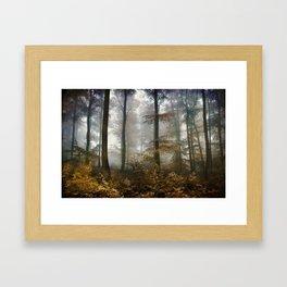 FOREST MYSTIC Framed Art Print