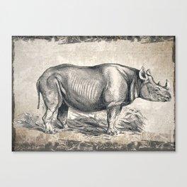 Vintage Rhino Sketch (Color) Canvas Print
