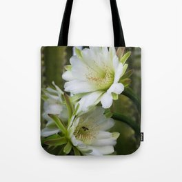 Cereus Morning  Tote Bag