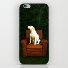 take it in iPhone & iPod Skin