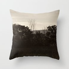 And In The Fields Throw Pillow
